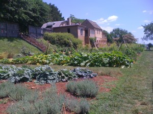 The Vegetable and Herb Gardens at Thomas Jefferson's Monticello