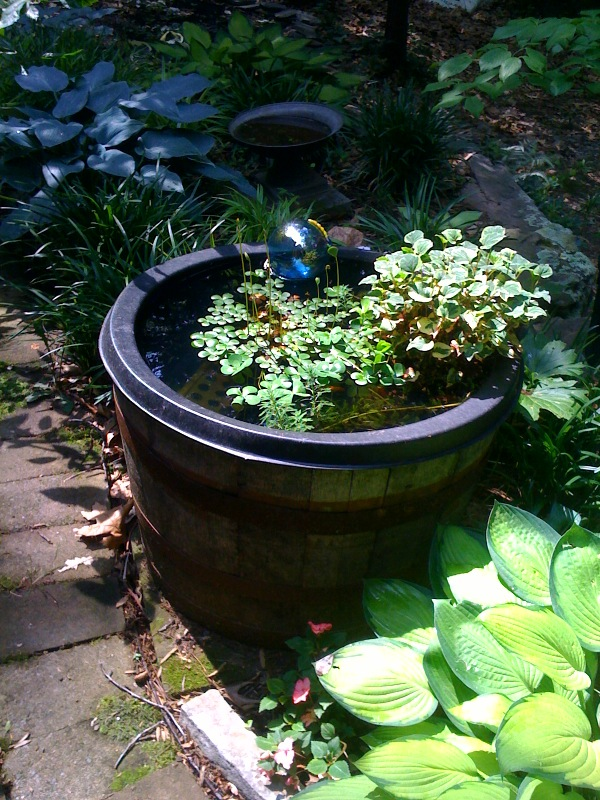 The whiskey barrel pond was simple to set up.