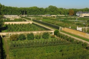 The King's Garden at Versailles (Courtesy versailles-tourisme.com)