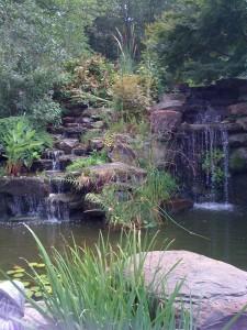 What is a destination garden a gardener 39 s delight - Merrifield garden center fairfax va ...
