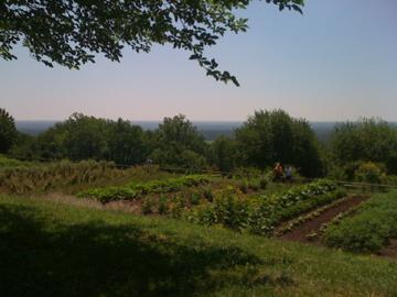 MonticelloVegGarden
