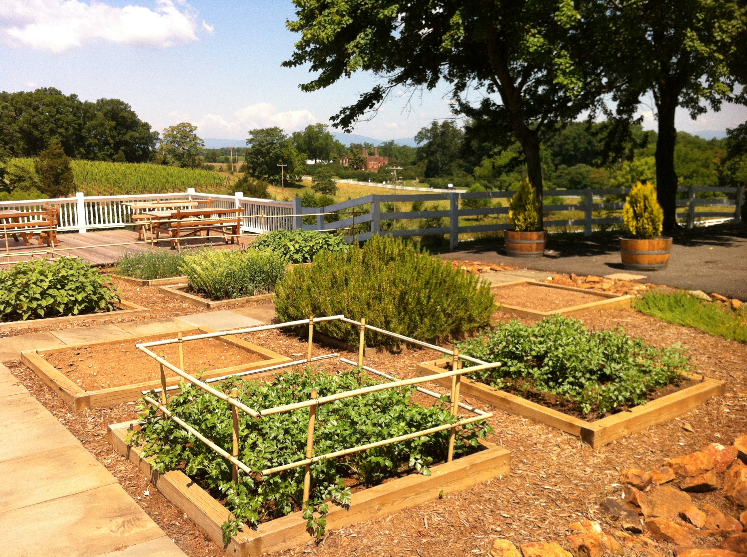 Kitchen Gardens The Kitchen Garden An Ode To Cooks And Non Cooks Alike A