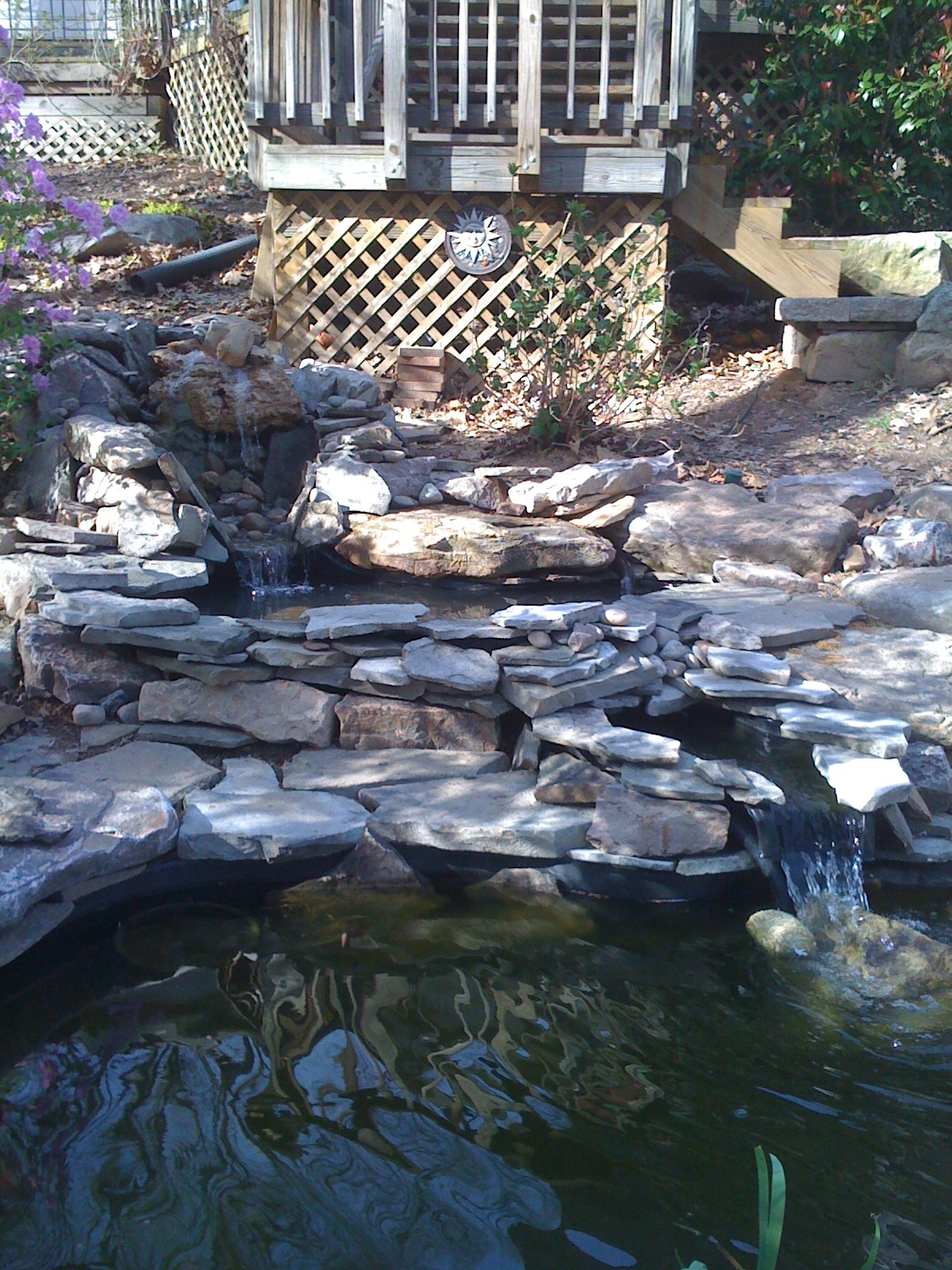 How To Build A Pond The Ponds Project A Gardener S Delight