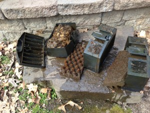 Disassembling and cleaning the pond pump filters (Photo Credit: Adroit Ideals)