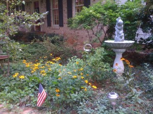 Black-eyed Susans and Coneflowers are great options for a butterfly garden!  (Photo Credit: Adroit Ideals)