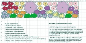 A butterfly garden design plan from Urban Debris (Photo Credit: urbandebris.com)