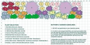 free butterfly garden design A Gardeners Delight