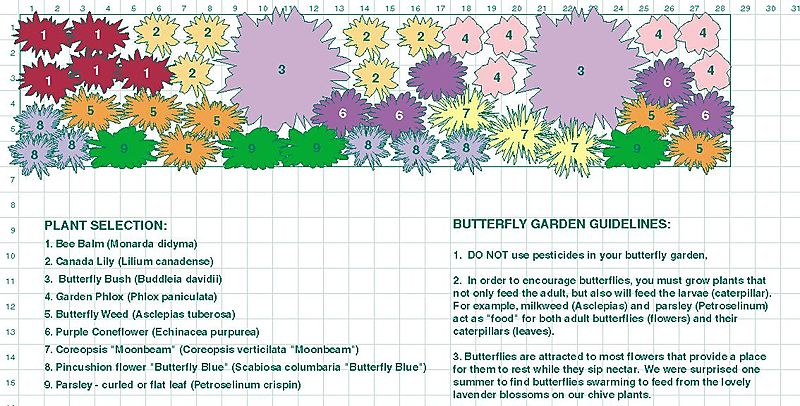 Free Flower Garden Designs And Layouts