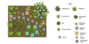 Butterfly Garden Design courtesy of University of Kentucky (Photo Credit uky.edu)