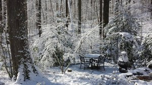 The back yard sitting area next to the ponds all pretty and white with snow (Photo Credit: Adroit Ideals)