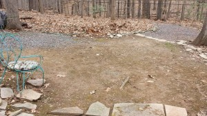 """The """"before"""" view of the extension of the gravel path.  Just an area where nothing but moss and weeds will grow."""