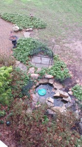 View of the bench and pond from my home office.
