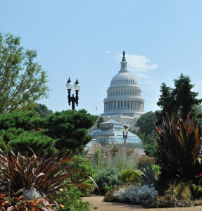 The United States Botanic Garden (Courtesy USBG)