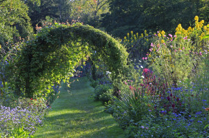 The Early Morning Light in the Cutting Garden (Photo Courtesy of Lisa Roper, Chanticleer)