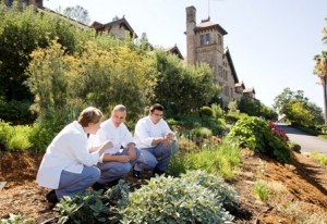Student Chefs in CIA's Greystone Herb Garden (Photo courtesy Keith Ferris)
