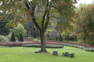 The Serpentine Garden with Sorghum at Chanticleer (Photo Courtesy of Lisa Roper, Chanticleer)