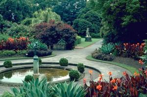 Royal Botanic Gardens, Sydney, Australia (Courtesy anbg.gov.au) © M. Fagg Australian National Botanic Gardens