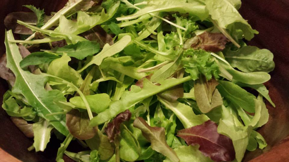 A bowl of baby lettuces that I grew in window box planters on my deck railing! (Photo Credit: Adroit Ideals)