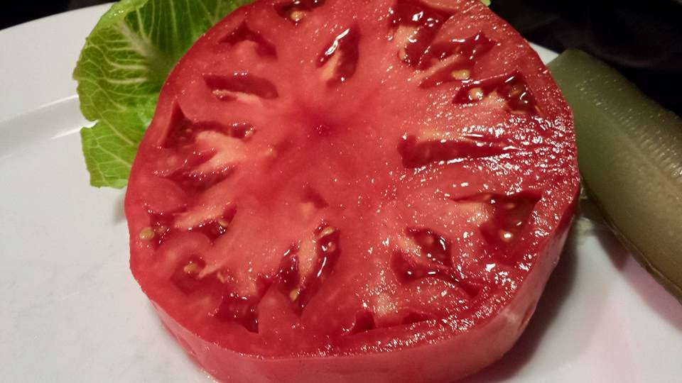 Gorgeous beefsteak tomato grown by my neighbor!  (Photo Credit: Adroit Ideals)