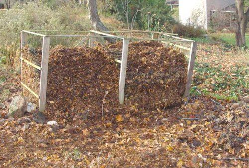 Mulch leaves in bins