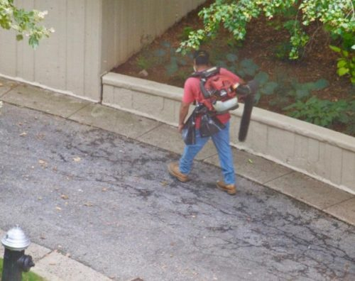 Landscaper blowing nothing