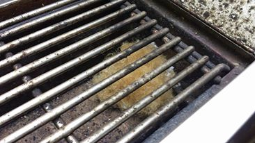 Mouse Nest in BBQ Grill