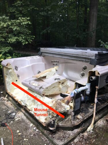 HotTub Demo reveals mouse tunnel